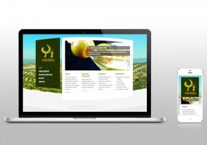 Verdeo Website